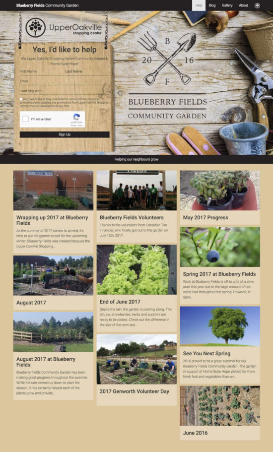 Blueberry Fields Community Garden